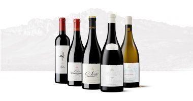 99 puntos de la Guía Proensa para algunos vinos de Bodegas Pujanza